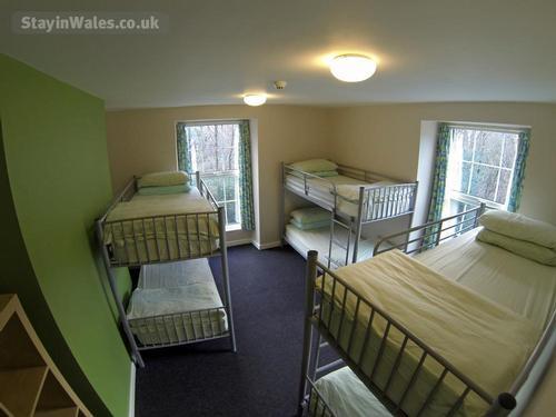 Bunkhouse room sleeps 6