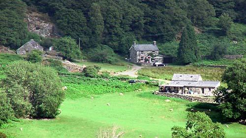 Llwyn Celyn cottages