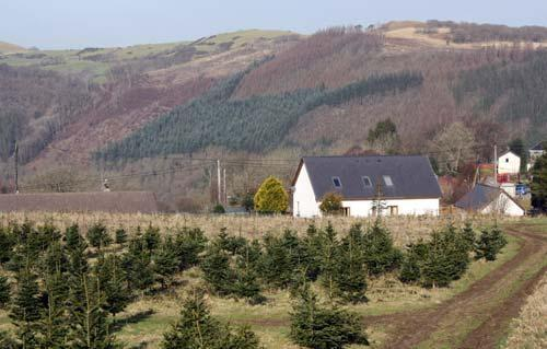 ystwyth valley b&b
