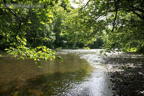 river ithon fishing rights