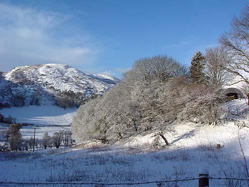 snowy scene at gaer farm in mid wales