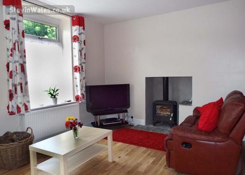 living room woodburner