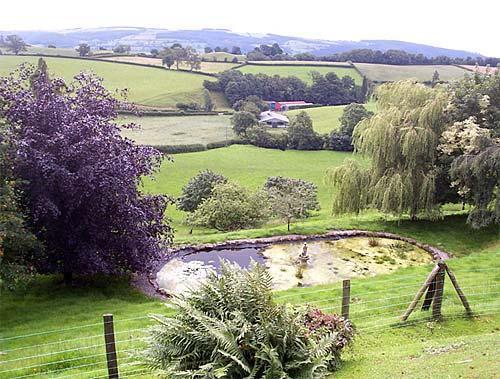 countryside near welshpool