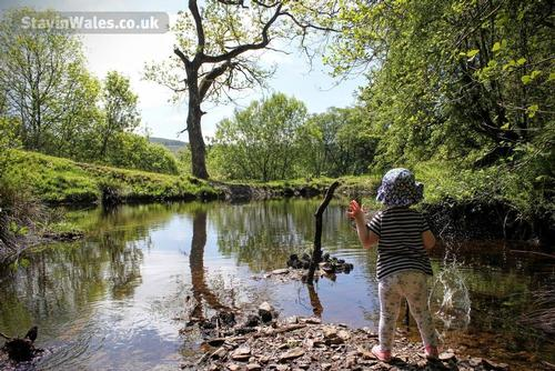 play in the pond at trawsgyrch cottage