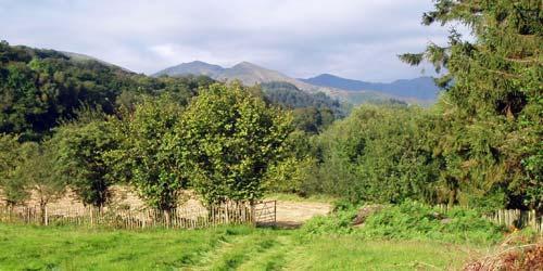 Dolwyddelan countryside