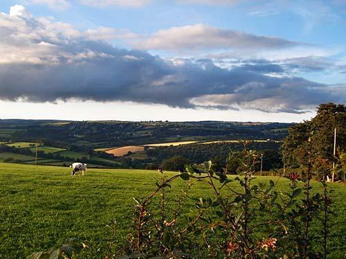 Carmarthenshire view