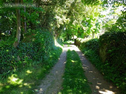 anglesey country lane
