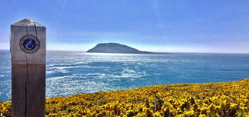Bardsey Island from the coastal path