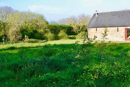 Ash Cottage garden