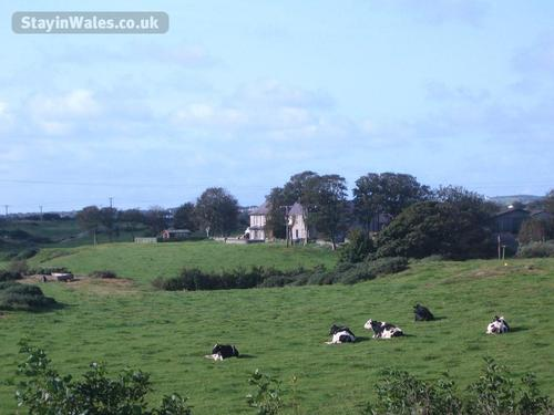 Anglesey country B&B