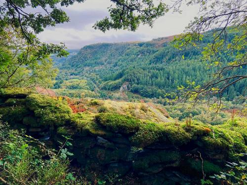 Viewpoint over the Lledr Valley