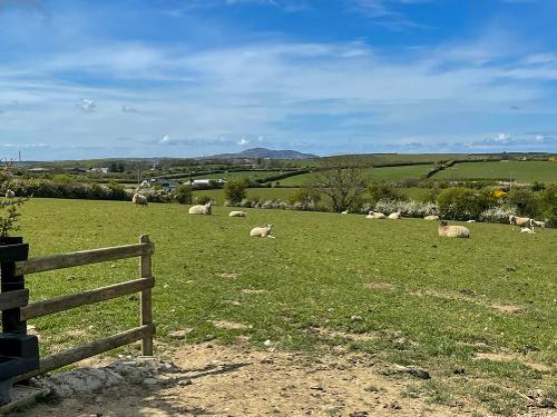 View towards Holyhead Mountain from the caravan