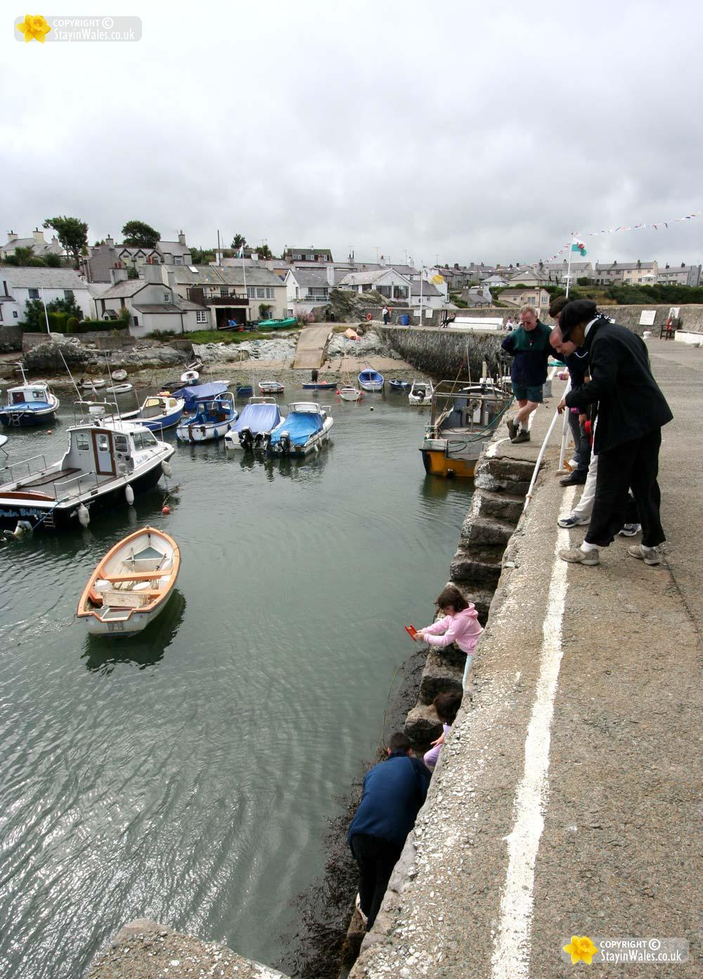 Cemaes Bay picture