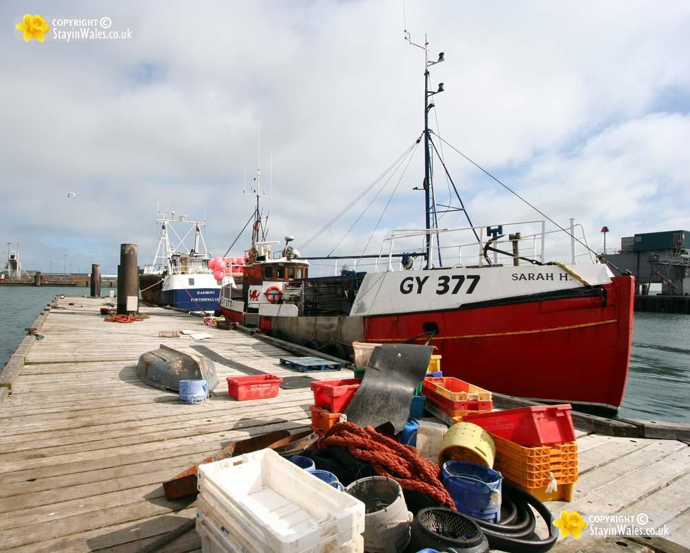 The Fish Quay at Holyhead