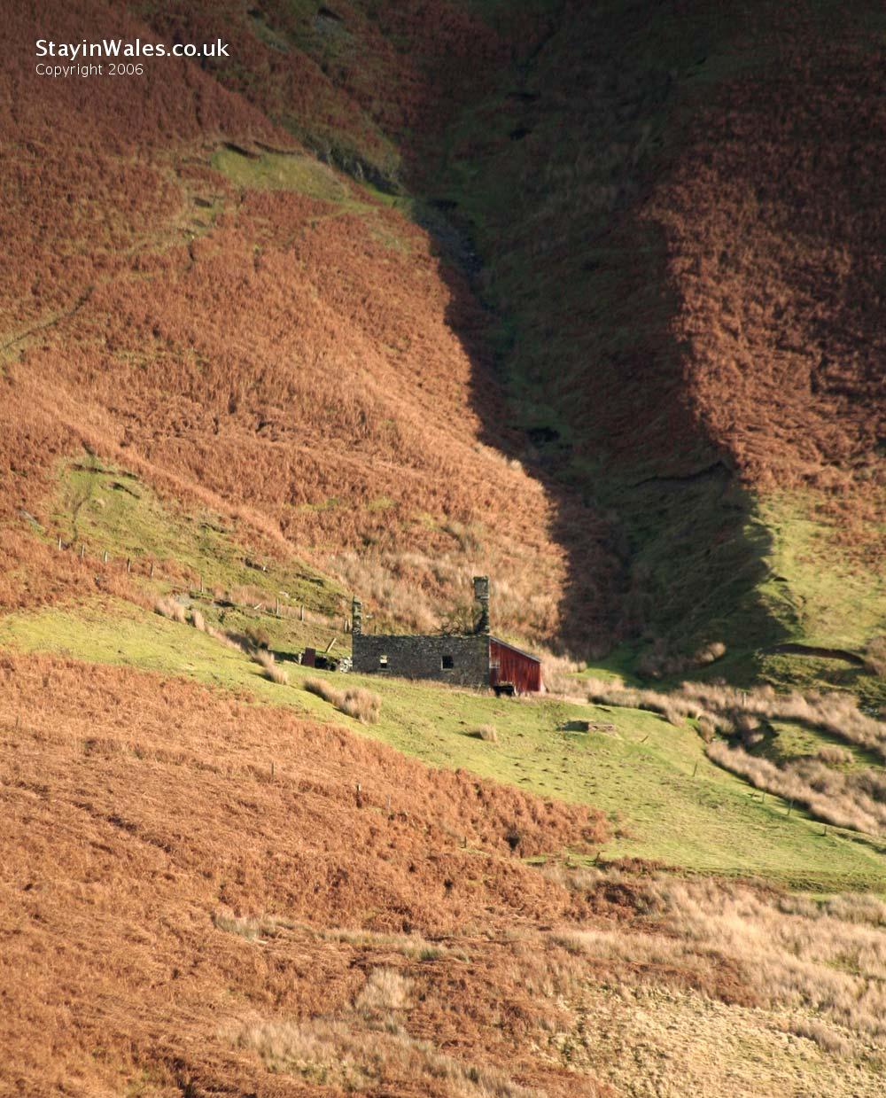 Elan Valley farmhouse ruin