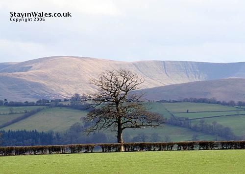 Brecon Beacons from Llanddew
