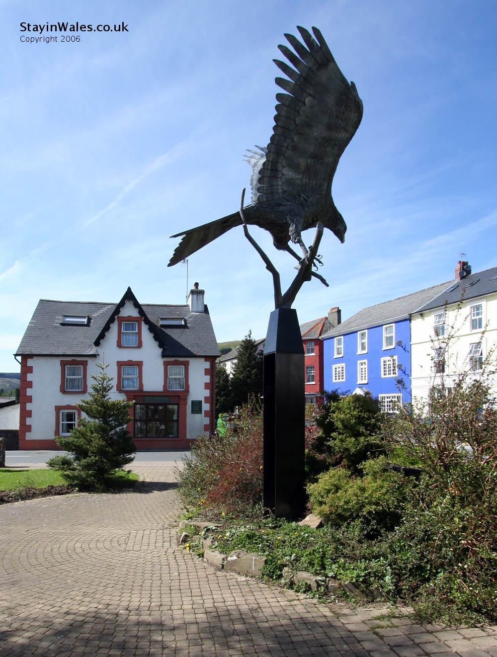 Red kite Llanwrtyd Wells