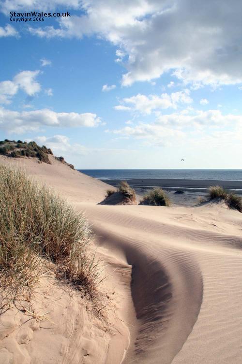 Shell Island sand dunes