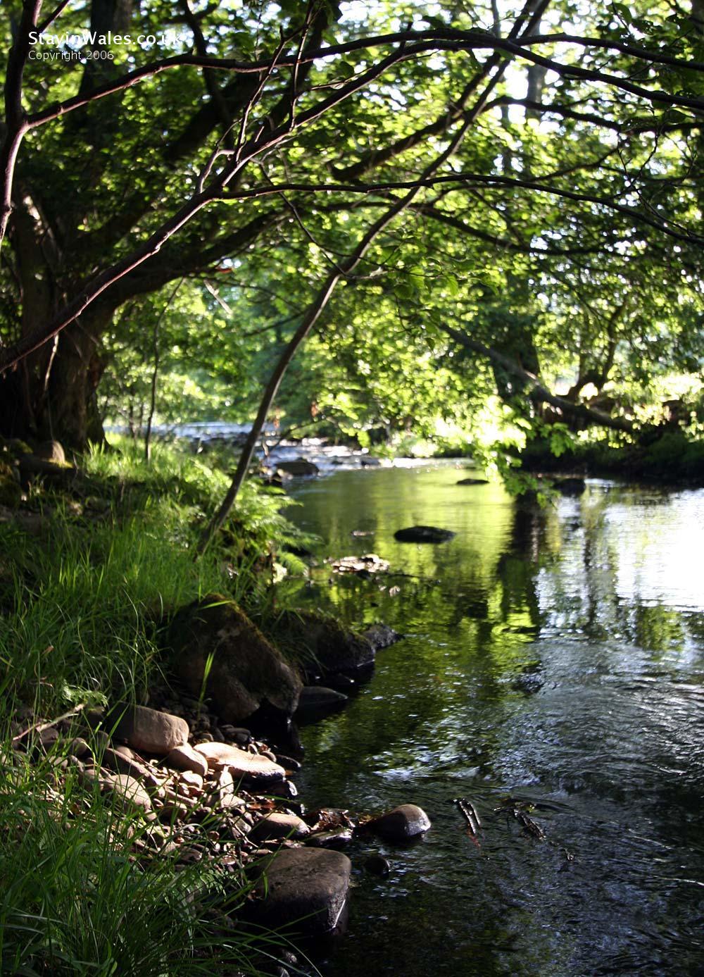 River Caerfanell