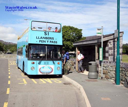 snowdonia bus