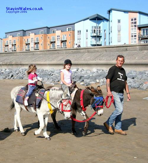 Donkey rides Llanelli