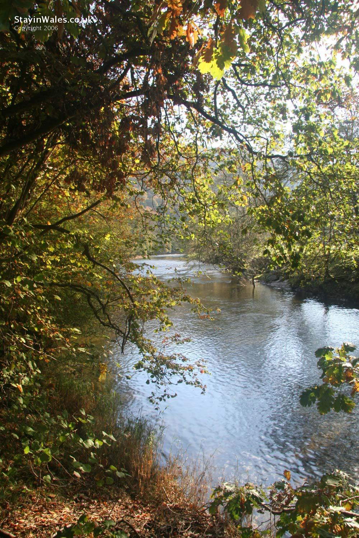 River Wye near Rhayader