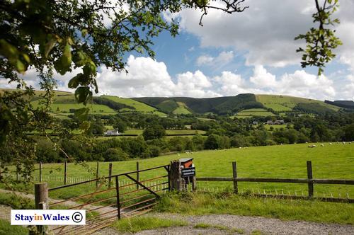 Mynydd Eppynt, Mid Wales