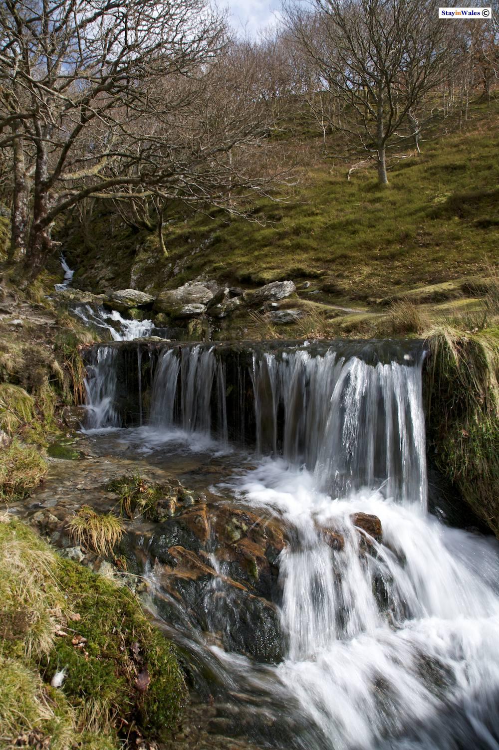 Mountain stream in the Elan Valley