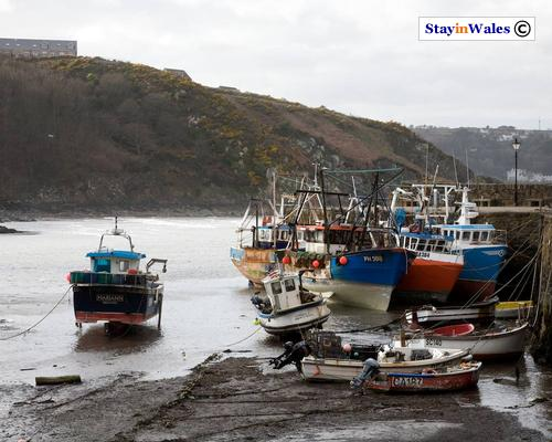 Fishing boats at Lower Town, Fishguard
