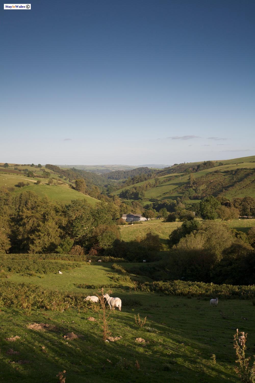 Upper Teme Valley near Felindre