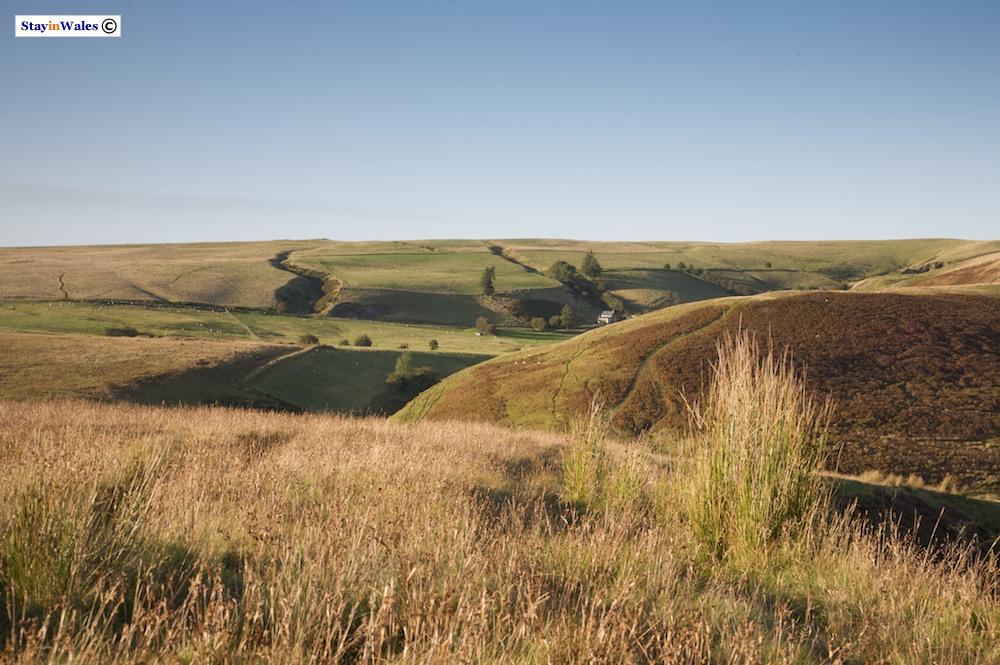 Cilfaesty Hill and Bryn Coch