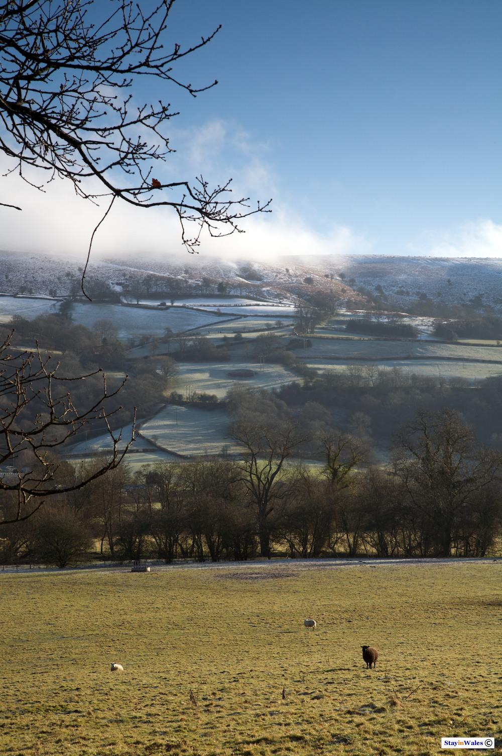 Aberedw Hill winter