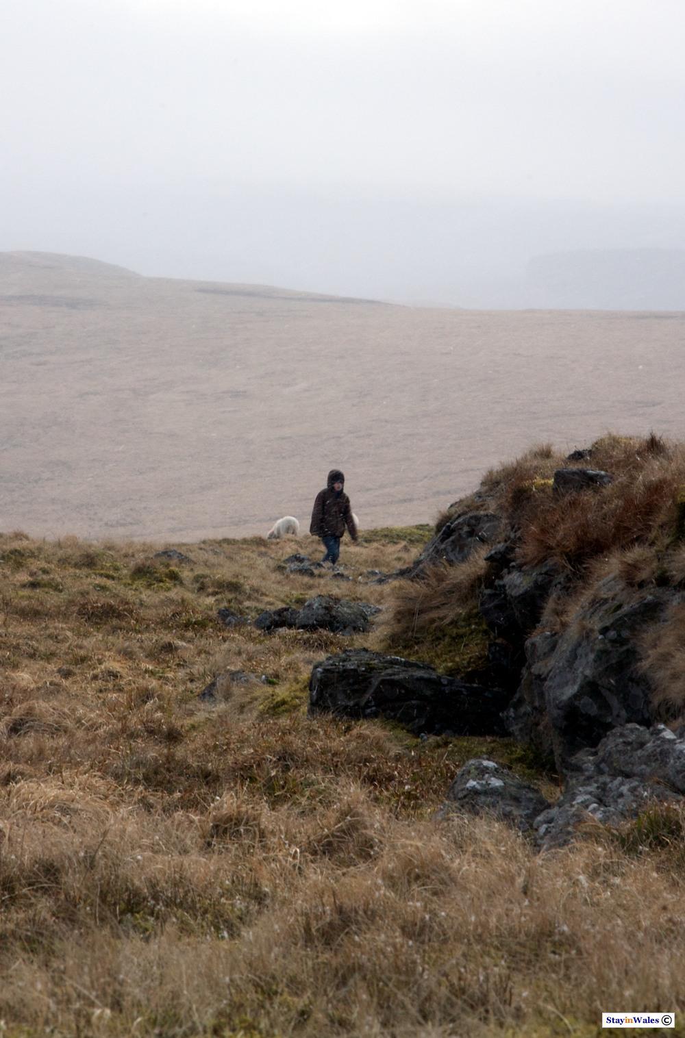 Walking to Draygarn Fawr