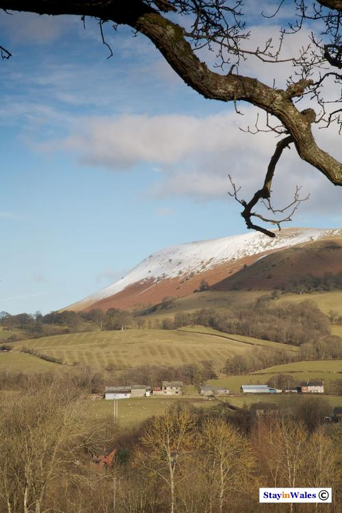 Snow on Aberedw Hill, Builth
