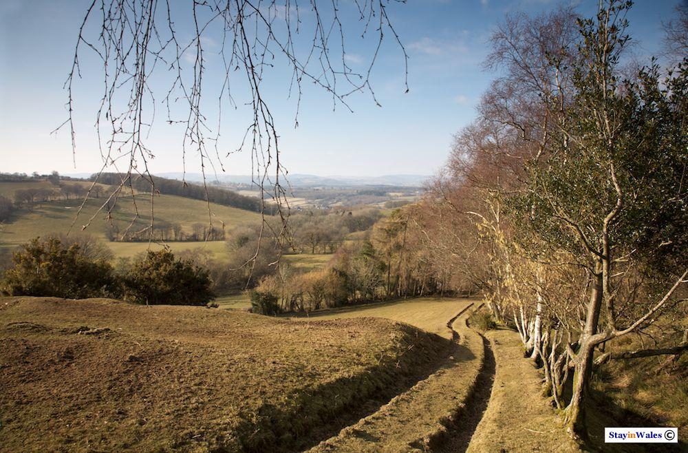 Footpath to the Mynydd Myddfai