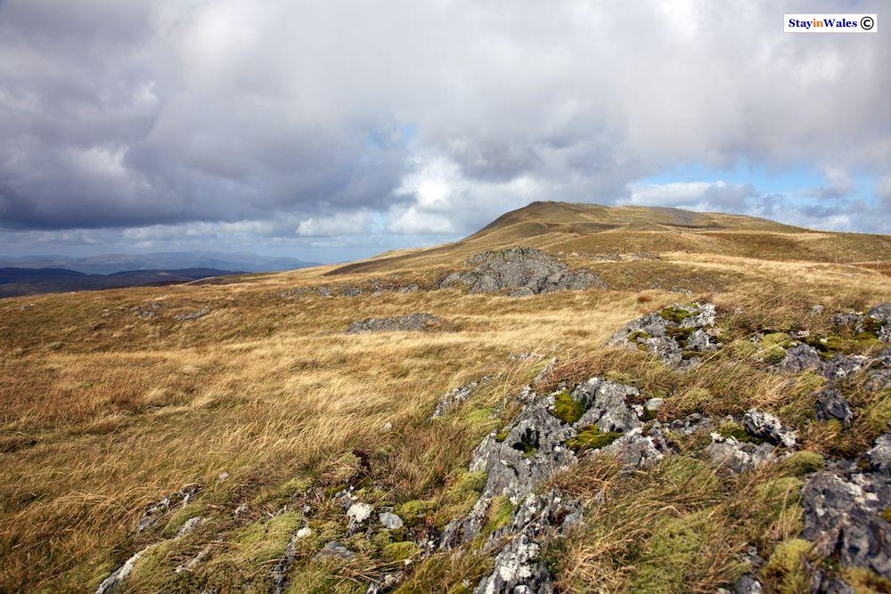 Pumlumon Fawr, Cambrian Mountains