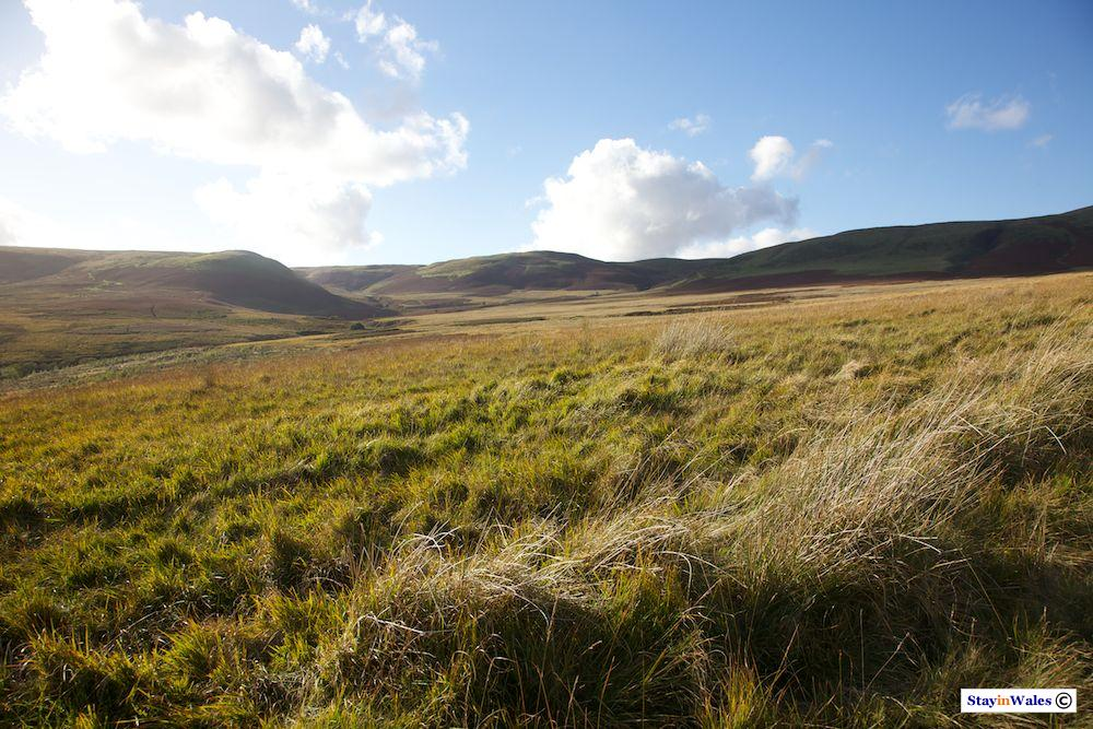 Rhos Saith-maen, Cambrian Mountains