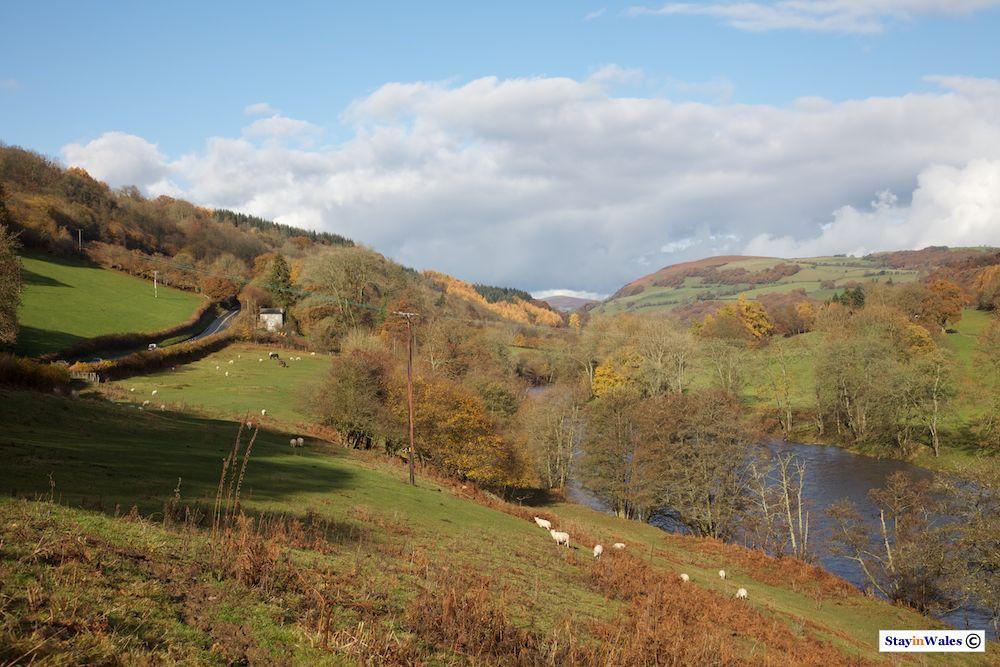 Wye Valley near Erwood