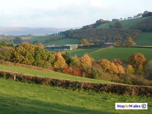Autumn view near Maesmynis
