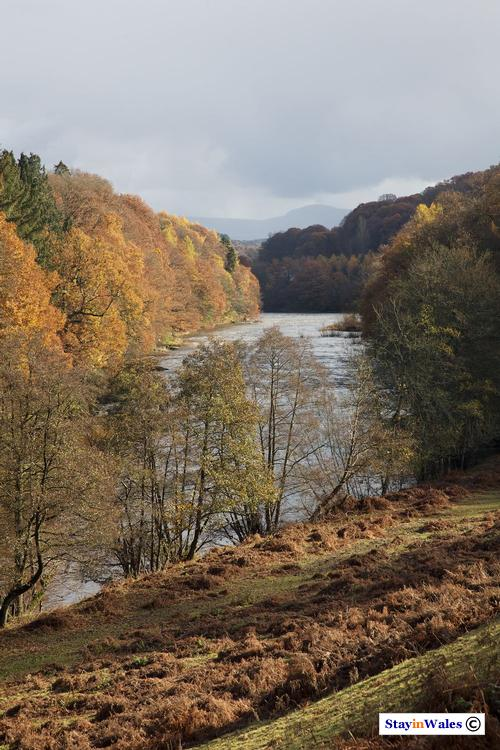 River Wye Autumn view