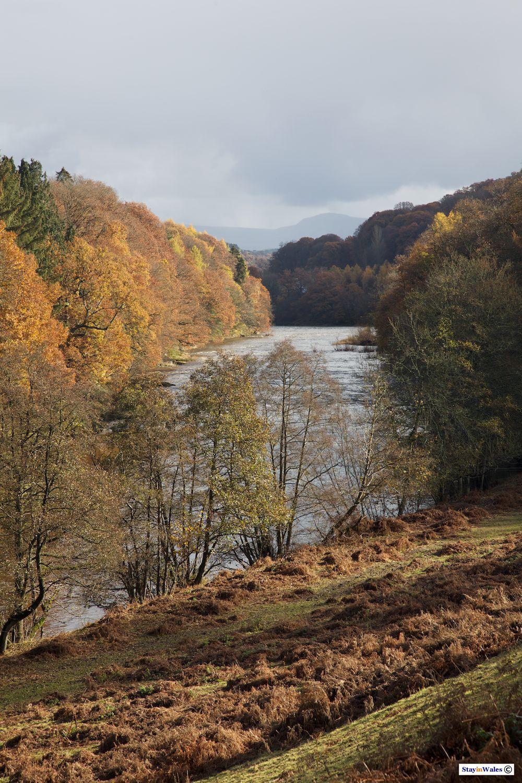 River Wye Autumn view