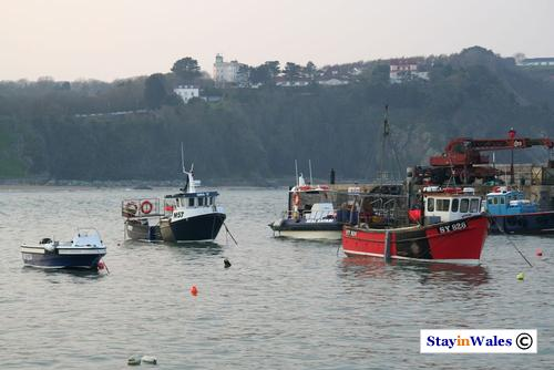 Tenby fishing boats
