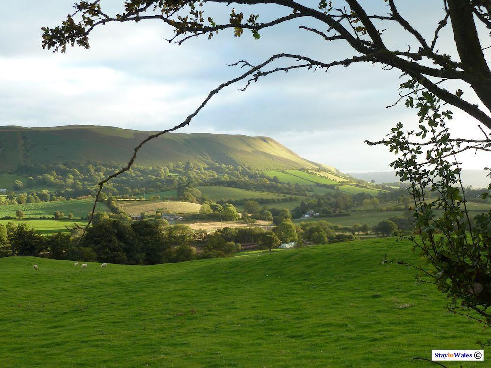 Aberedw Hill, Builth Wells