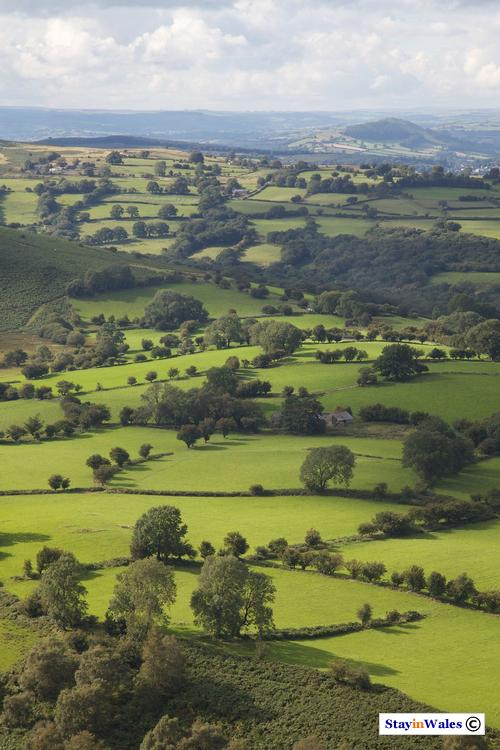 Usk Valley view