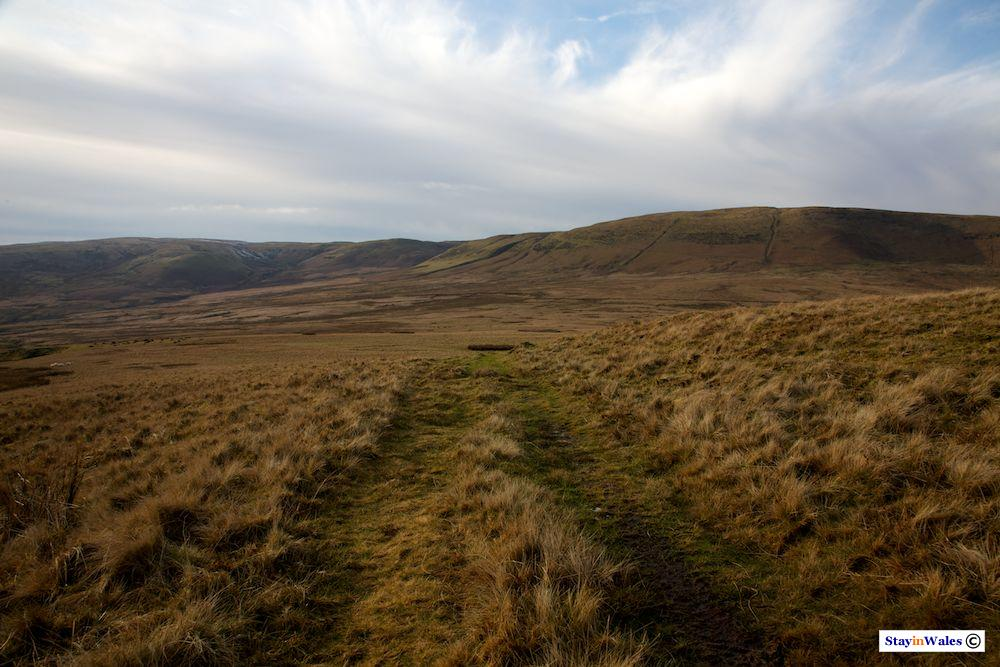 Moorland in the Cambrians