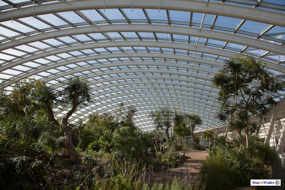 Great Glasshouse, Carmarthenshire
