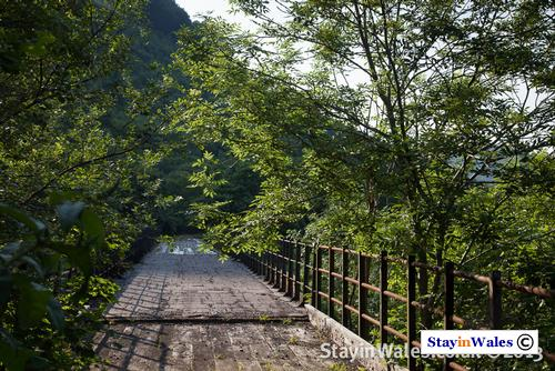 Old railway viaduct at Pontywaun