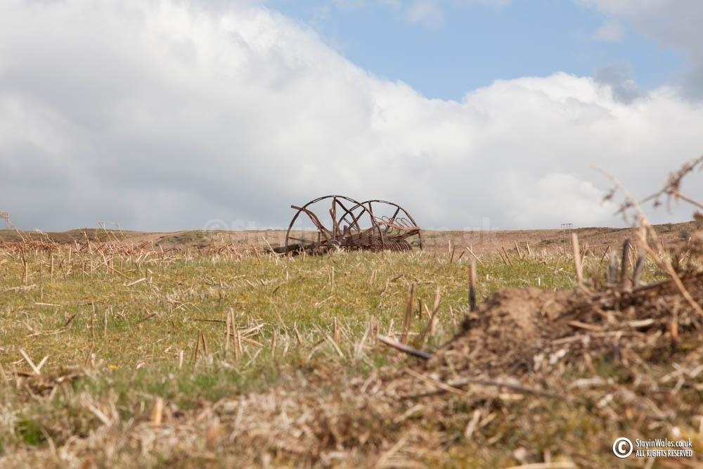 Abandoned hay scarifier