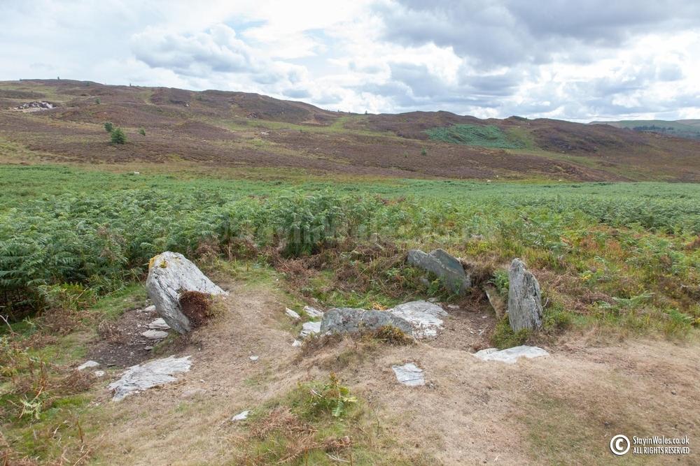 Standing stones Elan Valley