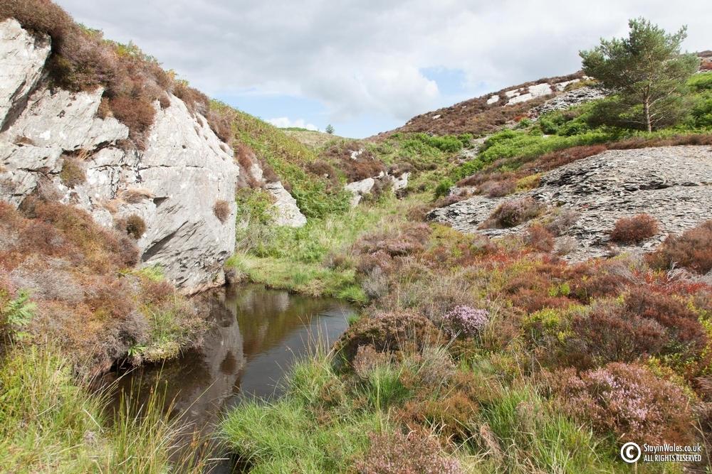 Elan valley stream